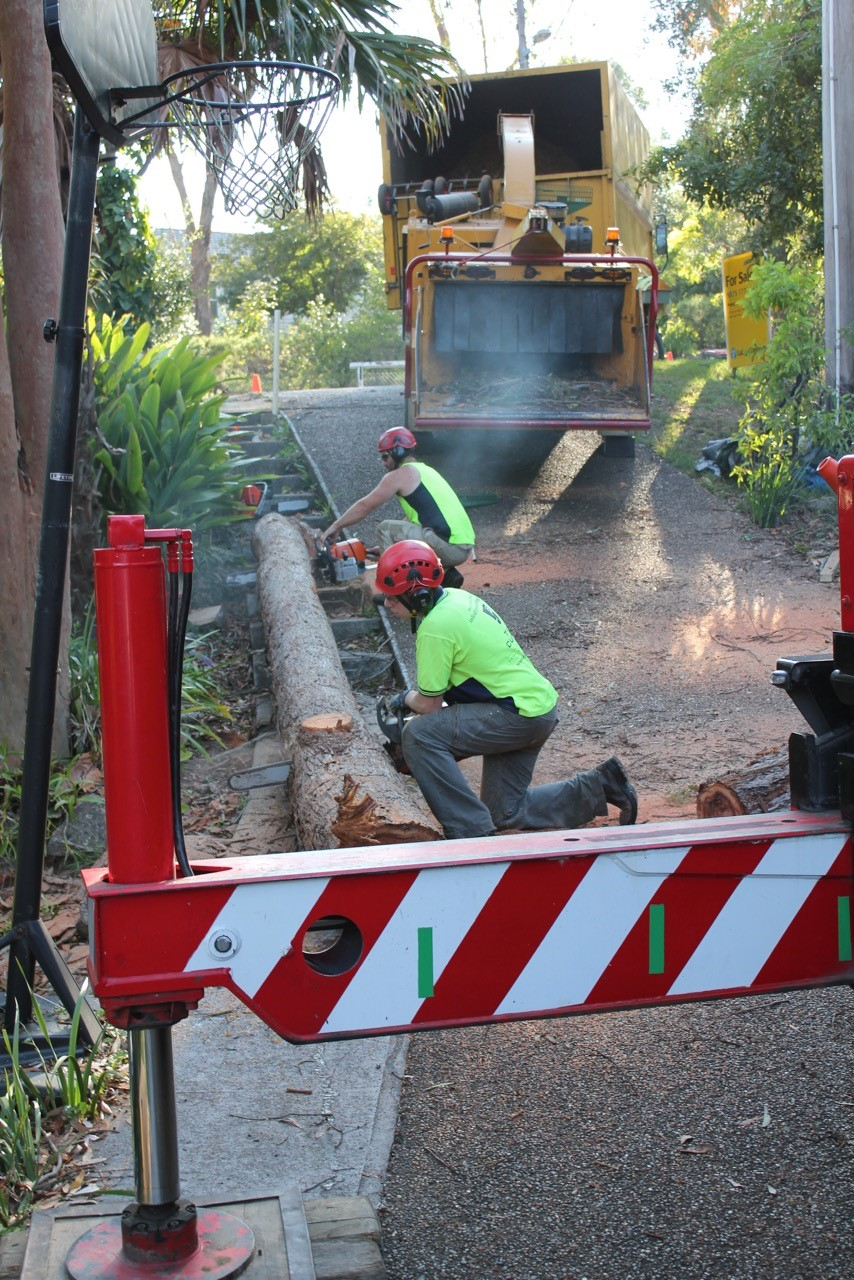 Land Clearing Services Sydney | The Tree Cutting Company